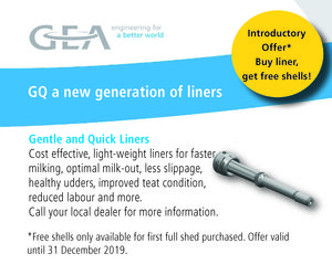 GEA Liners Promo 2019